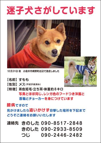 web_sumomo.jpg